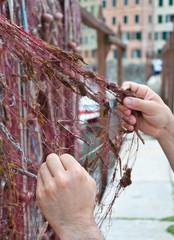 Fishing net in Camogli in Italy