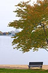 Tidal Basin and Thomas Jefferson Memorial at the morning