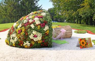 KIEV, UKRAINE - SEPTEMBER29: Chrysanthemumsr Show Landscape Park