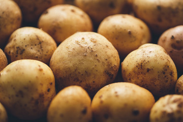 Fresh potato tubers