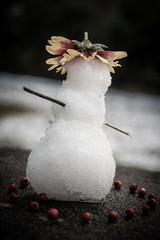 joli petit bonhomme de neige