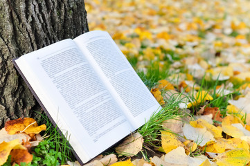 Open book in nature