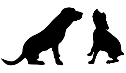 Vector silhouette of the dog.