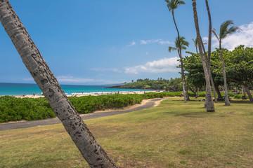 View of Hapuna Beach, Big Island, Hawaii