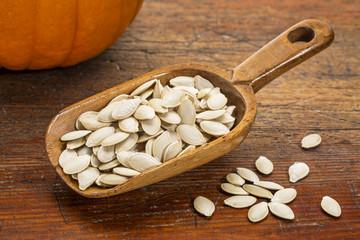 scoop of pumpkin seeds