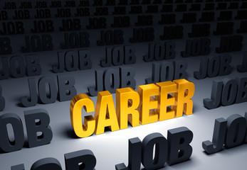 Choose a Career, Not a Job