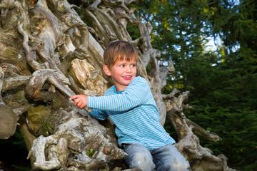 Junge klettert auf Baumwurzel