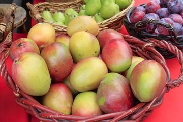 farmers Market - Fairchild Gardens -Fruit