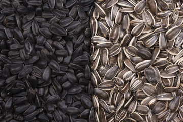 Black and white sunflower seeds as background