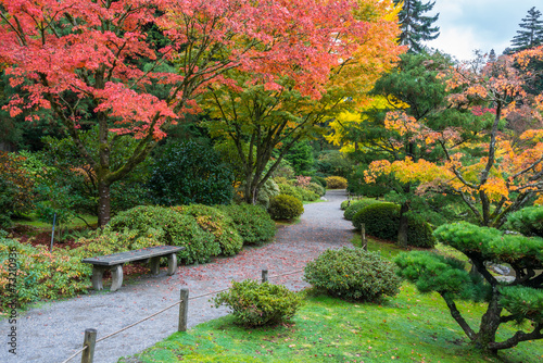 Fotobehang Tuin Autumn Colors Park Bench Walking Path Garden Arboretum