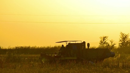Harvesting a field at sunset