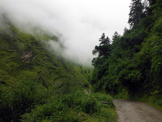 Annapurna Circuit Trail in Green Himalayas during Monsoon