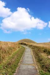 阿蘇 米塚と登山道