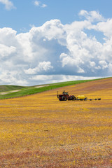 Harvested wheat field with tractor
