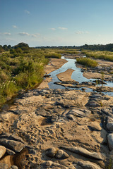 Small African river