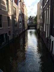 Belleza por las calles de Rotterdam (Holanda)