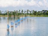 Aquaculture in Myanmar poster