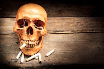 Skull with cigarettes, still life.