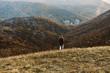 Man walking in mountains