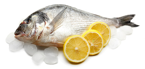 Fresh fish with ice isolated on white