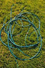 hose pipe on garden grass