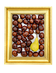 conker fruits and pear in in golden retro frame