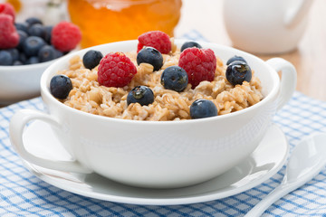oat porridge with berries
