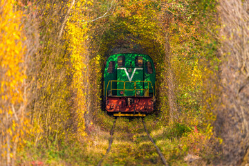 Train in the natural tunnel