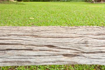 tronc sec sur pelouse, banc naturel