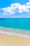 Beach Summer Paradise