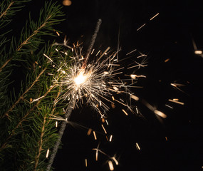 sparklers and spruce branches