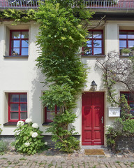House door with flowers, Altenburg, Thuringia Germany
