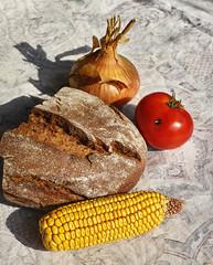 still life with bread, onion, corn, tomato