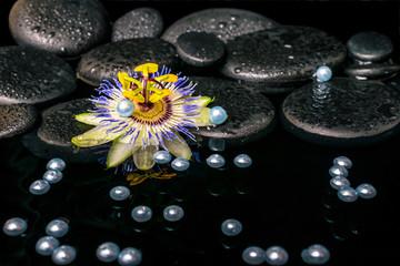 beautiful spa setting of passiflora flower on zen basalt stones