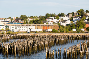 Wood Posts in Harbor of Portland Maine