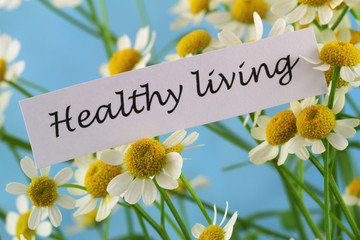 Healthy living card with chamomile flowers on blue background