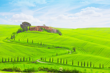 Summer landscape with cypresses and old farmer house, Tuscany