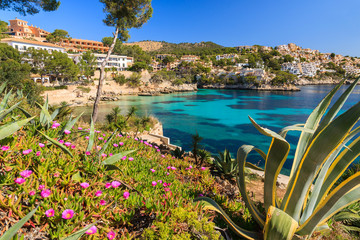 Beautiful bay and beach with flowers in Cala Fornells, Majorca