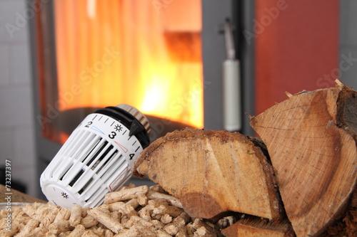 In de dag Vuur / Vlam Ofen mit Heizungsthermostat