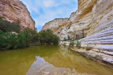 Unique canyon Ein Avdat