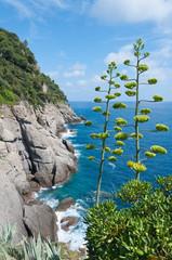 Portofino in Italy