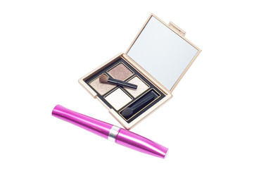 brushes with powder and mascara for eyes