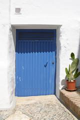 blue metal door and cactus in clay pot