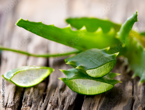 Leinwandbild Motiv Aloe Vera leaves