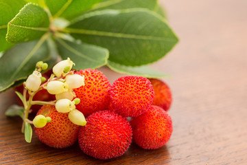 """Wild """"medronho"""" - arbutus- typical fruit  from Portugal, Europe"""