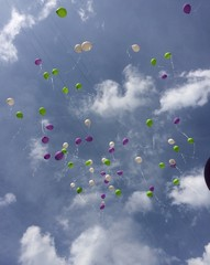 globos sobre el cielo azul