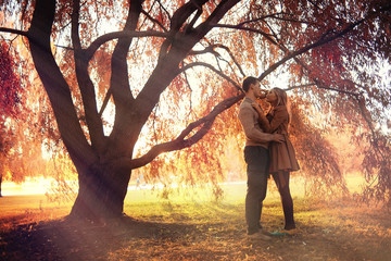loving couple in autumn park sunbeams sunset