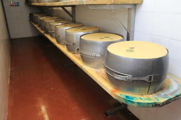 preparazione forme parmigiano reggiano formaggio tipico emiliano