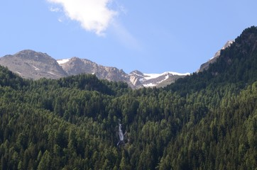 bosco e montagne