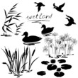 Wetland plants and birds set - 73255337